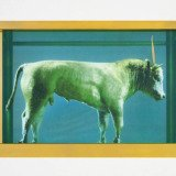 Damien Hirst, The Golden Calf