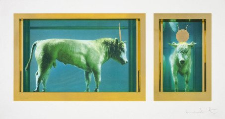 Damien Hirst The Golden Calf art for sale