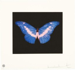 To Belong, by <a href='/site-admin/artists/artist/483'>Damien Hirst</a>