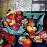 Daniel Gordon, Clementines from &quot;Still Lifes, Portraits and Parts&quot;
