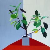 Guy Yanai, Plant in Corner