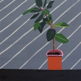 Guy Yanai, The Athlete