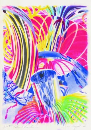 James Rosenquist Cabeza de Vaca, Sorcerer art for sale