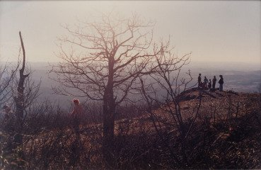 Justine Kurland Meeting on the Hill art for sale