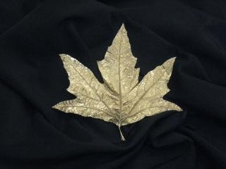 Inverted Leaf California Sycamore, by <a href='/site-admin/artists/artist/163'>Pae White</a>