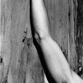Ralph Gibson, Days at Sea