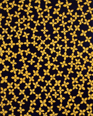 Sara Sosnowy Yellow Star Flower art for sale