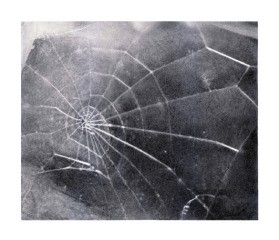 Spider Web, by Vija Celmins